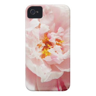 Pale Pink Peony Dreams Case-Mate iPhone 4 Cases