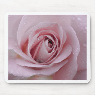 pale pink rose mouse pad