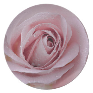 pale pink rose plate