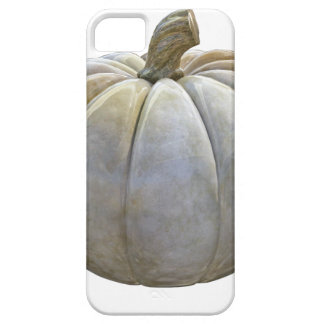 Pale Pumpkin iPhone 5 Covers