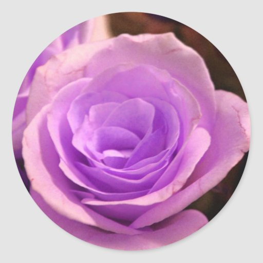 Pale Purple Rose Stickers
