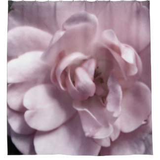 Pale Rose Shower Curtain
