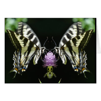 Pale Swallowtail doubled Card
