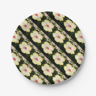 Pale Yellow Hibiscus Flower - Front View Paper Plate