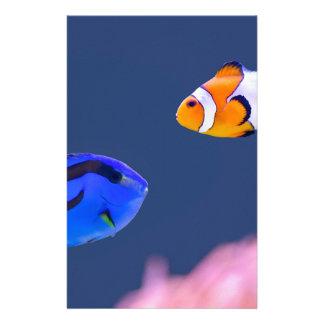 Palette surgeonfish and clown fish swimming stationery