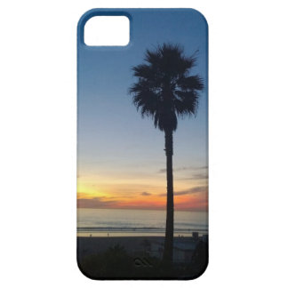 Palm at Sunset IPhone Case iPhone 5 Cases