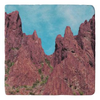 Palm Canyon Arizona Trivet