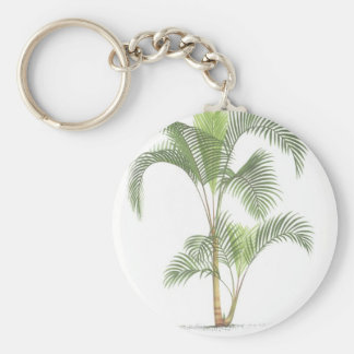 Palm collection - Drawing II Key Chains