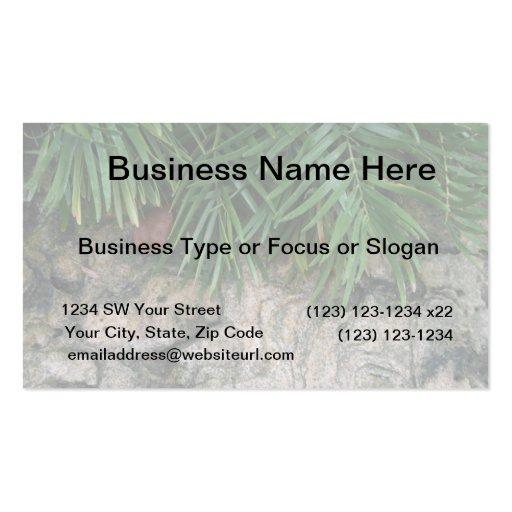 Palm fronds over rocks neat garden photo business card template