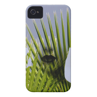 Palm iPhone 4 Case-Mate Case