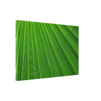 Palm Leaf Stretched Canvas Prints