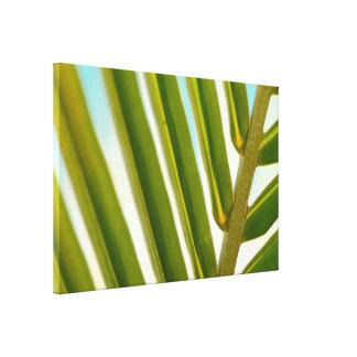 Palm Leaf Photo Canvas Print
