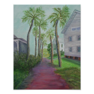 PALM ROW ST. AUGUSTINE Poster