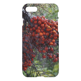 palm seeds on a rainy day in rural australia iPhone 7 case