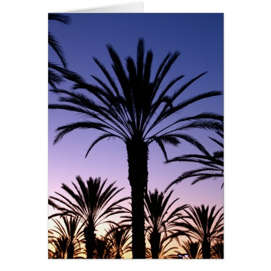 Palm Skies Card