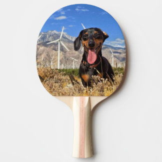 Palm Springs Ping Pong Paddle