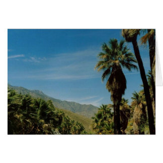 Palm Springs View Card