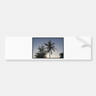 Palm Sunset Bumper Sticker