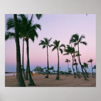 Palm Tree 2 Print