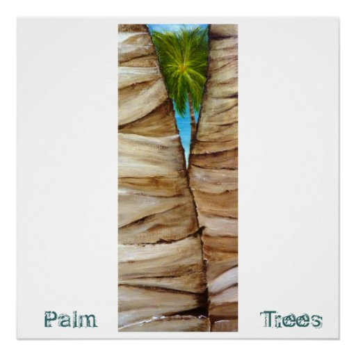Palm Tree 3 Poster