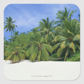 Palm Tree 3 Square Sticker