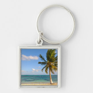 Palm Tree and Beach Silver-Colored Square Key Ring