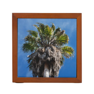 Palm tree and blue skies desk organizer