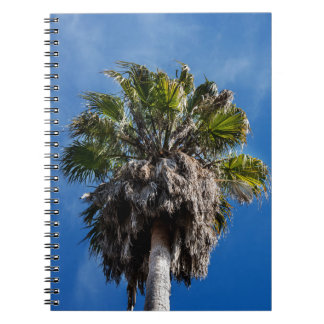 Palm tree and blue skies note book