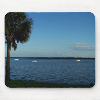 Palm Tree and Boats Mouse Pad