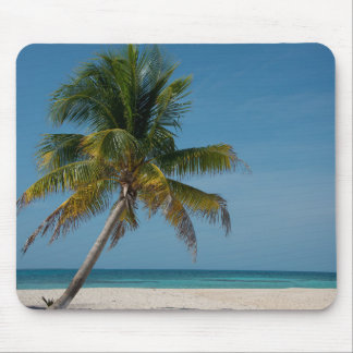 Palm tree and white sand beach  2 mouse pads