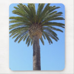 Palm Tree at San Diego, CA Mouse Pad