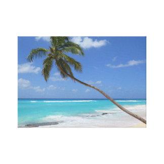 Palm tree beach caribbean canvas print