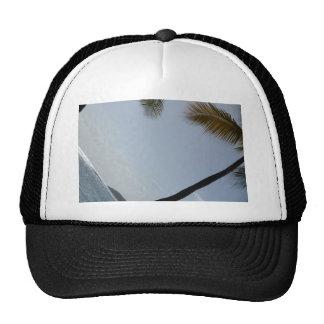 Palm tree beach hats
