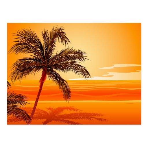 Palm Tree Beach Sunset Post Cards