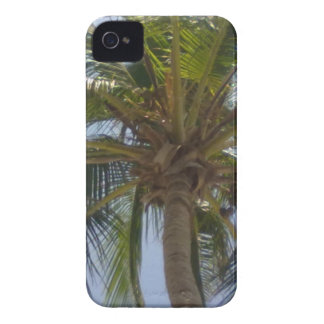Palm Tree Blackberry Bold Case