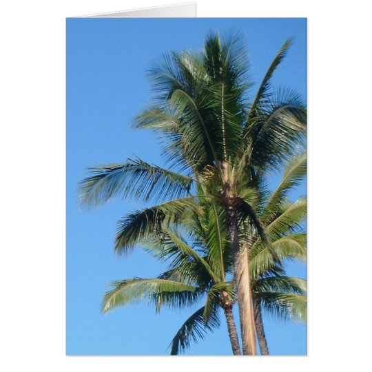 *Palm Tree* Blank Greeting Card