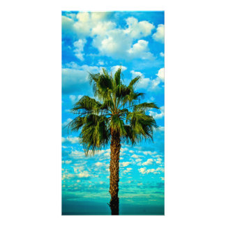 Palm Tree Blue Sky with Clouds Card