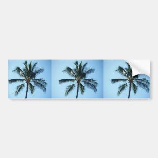 *Palm Tree* Bumper Sticker