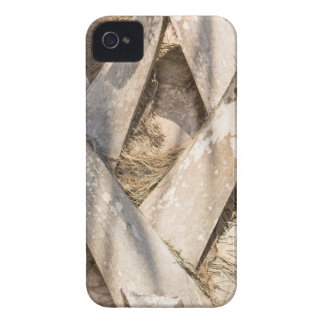 Palm Tree Close Up Detail Abstract Tight Crop iPhone 4 Case
