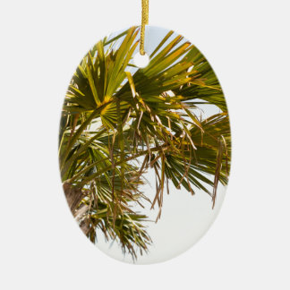 Palm Tree from the East Coast famous Myrtle Beach Ceramic Oval Decoration