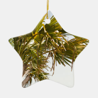 Palm Tree from the East Coast famous Myrtle Beach Ceramic Star Decoration