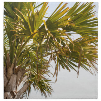 Palm Tree from the East Coast famous Myrtle Beach Napkin