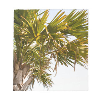 Palm Tree from the East Coast famous Myrtle Beach Notepad