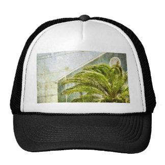 Palm Tree :) Hats