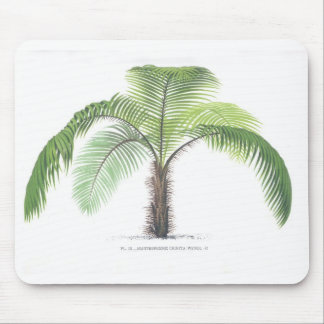 Palm tree illustration III Collection Mouse Pad