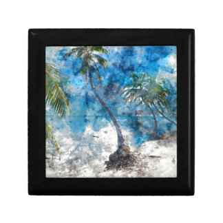 Palm Tree in Ambergris Caye Belize Gift Box