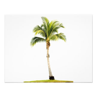 Palm tree personalized invites