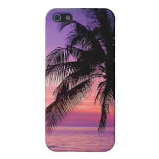 Palm Tree Iphone Case Case For The iPhone 5
