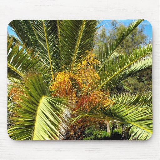 Palm tree leaves and flowers mouse pads