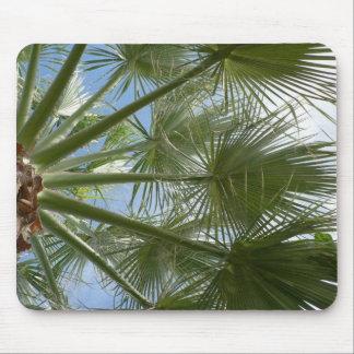 Palm Tree Leaves Mousepad
